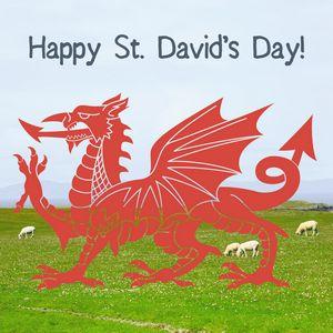 St Davids Day