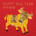 Chinese New Year Card (Year of the Ox)